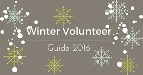 Winter Volunteer 2